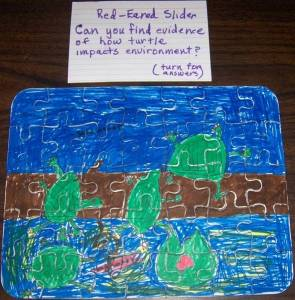 Red-Eared Slider Puzzle